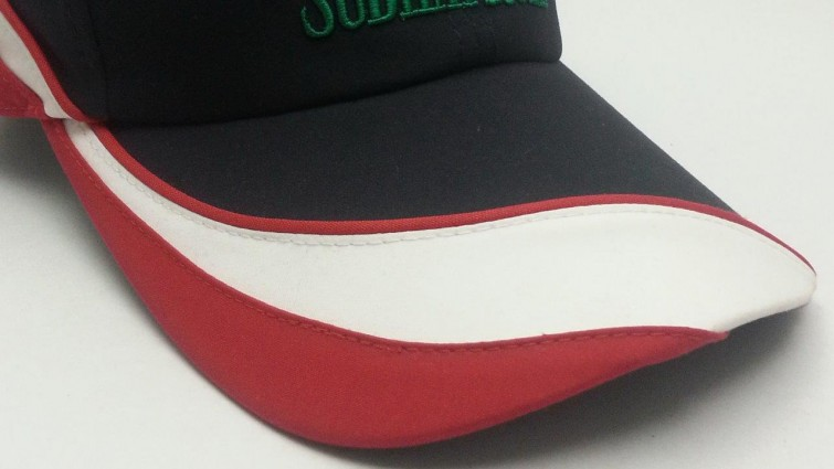 Visor Curved Cut panels+Rope