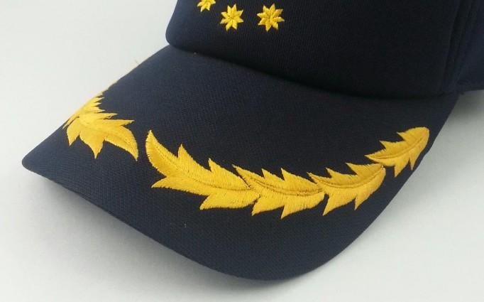 Visor Emb Govt Symbol2
