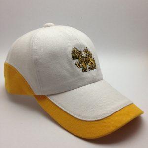 หมวกแก๊ป6ชิ้น 09 (3)